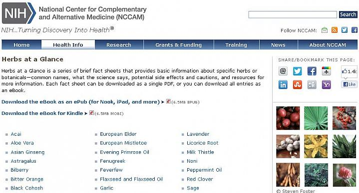 Screen capture of the homepage for Herbs at a Glance.