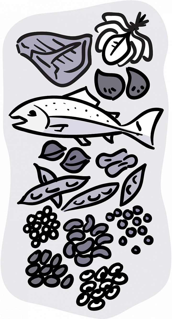 Illustration of iron-rich foods, including fish, red meat, beans, and dark leafy vegetables.