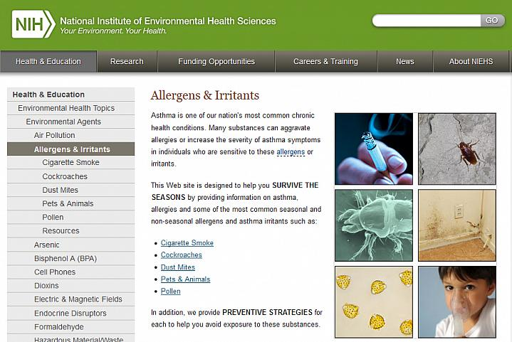 Screen capture of the homepage for the Allergens & Irritants website.
