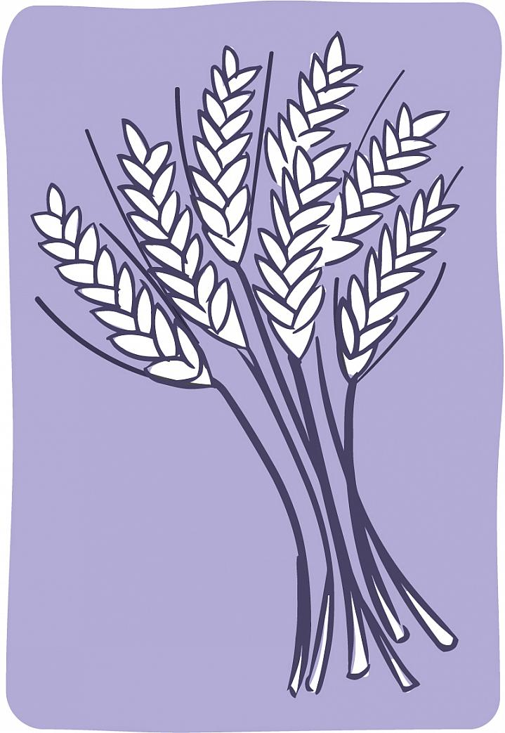 Illustration of a sheaf of wheat.