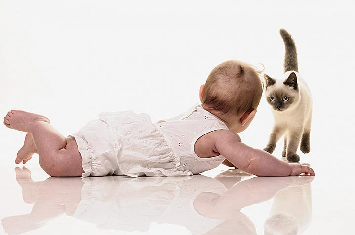 Baby on the floor with a kitten
