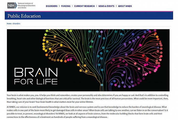 Screenshot of the Brain for Life Website