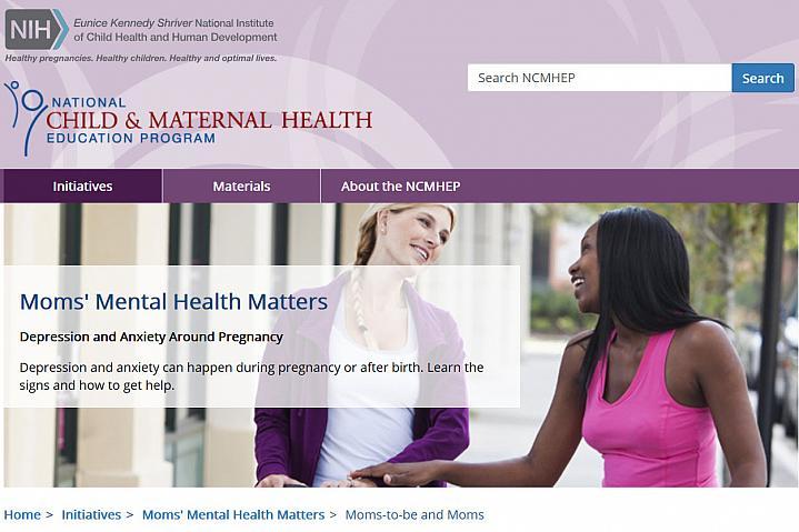 Screenshot of the Moms Mental Health Matters website