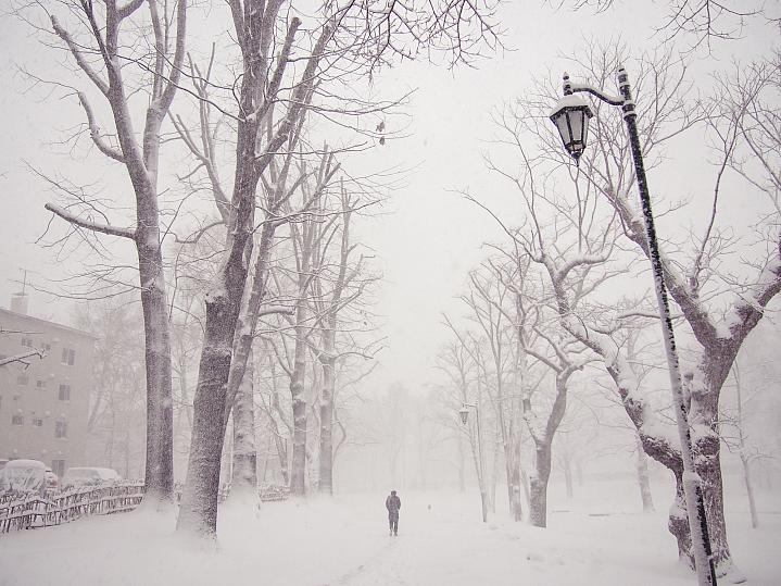 Person walking down a street filled with snow