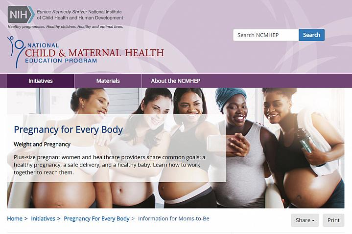 Screenshot of the Pregnancy for Every Body website